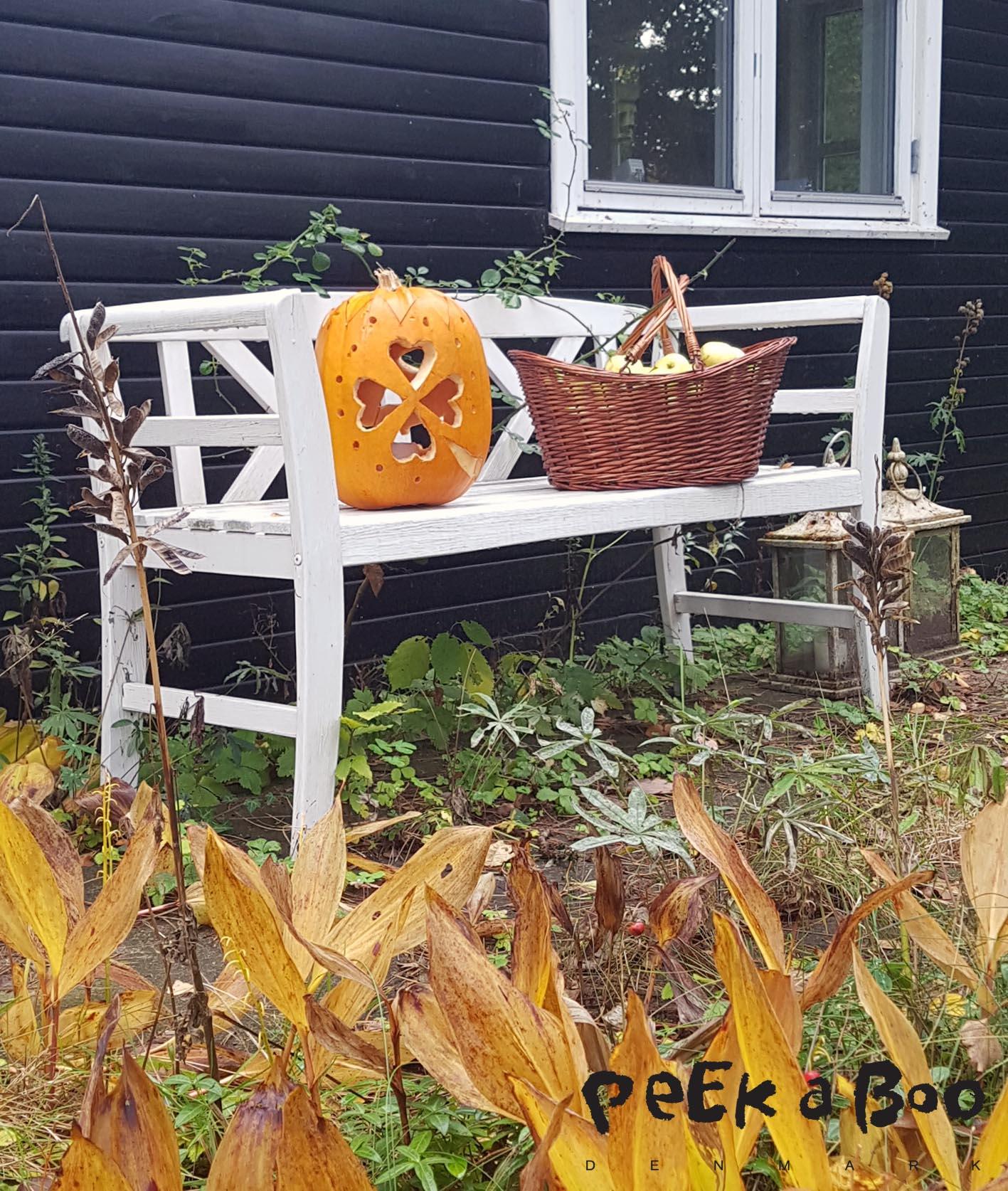 Efterårsfornemmelser på bænken foran sommerhuset.