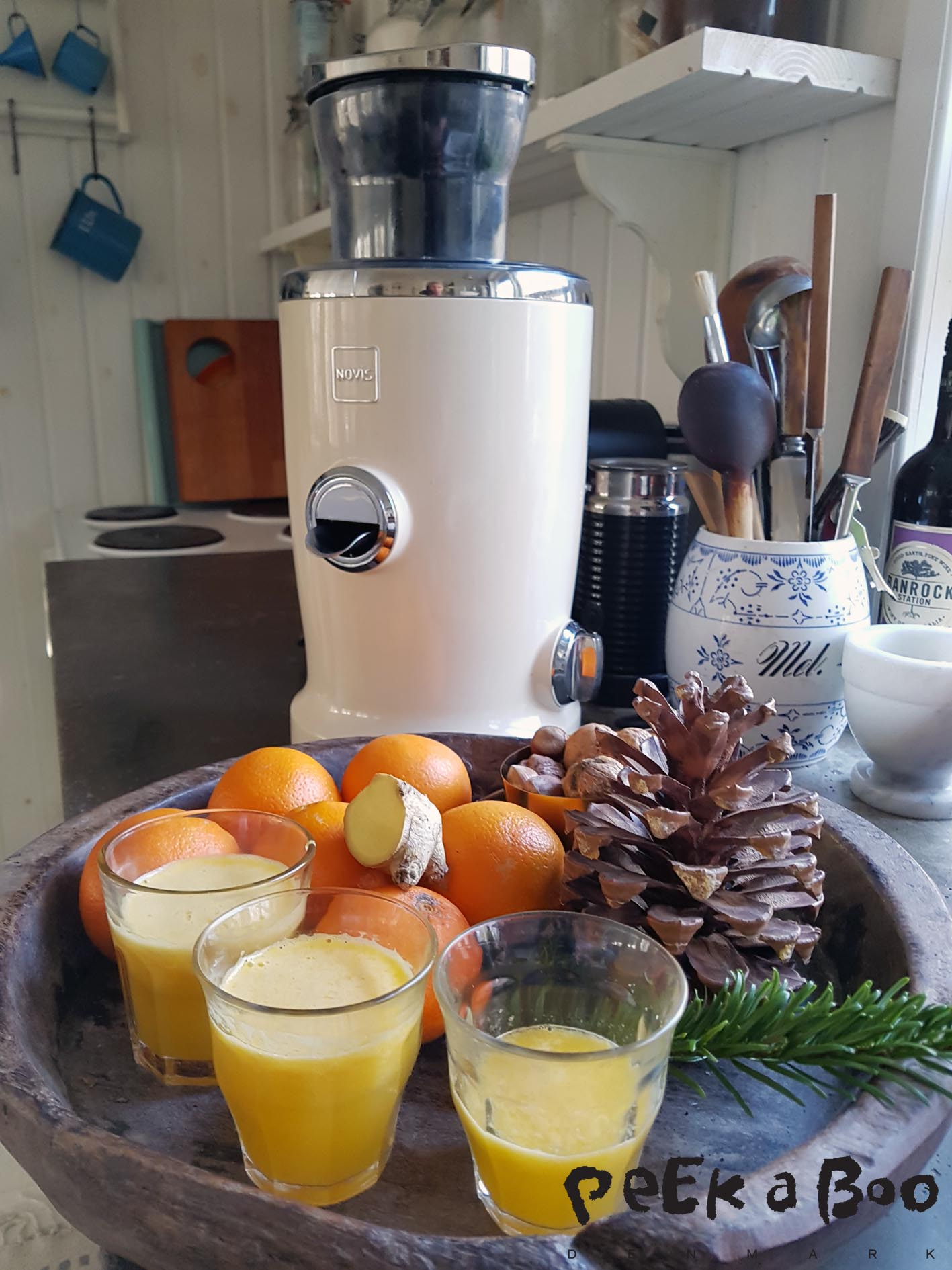 Novis Juicer making get-well soon juice.