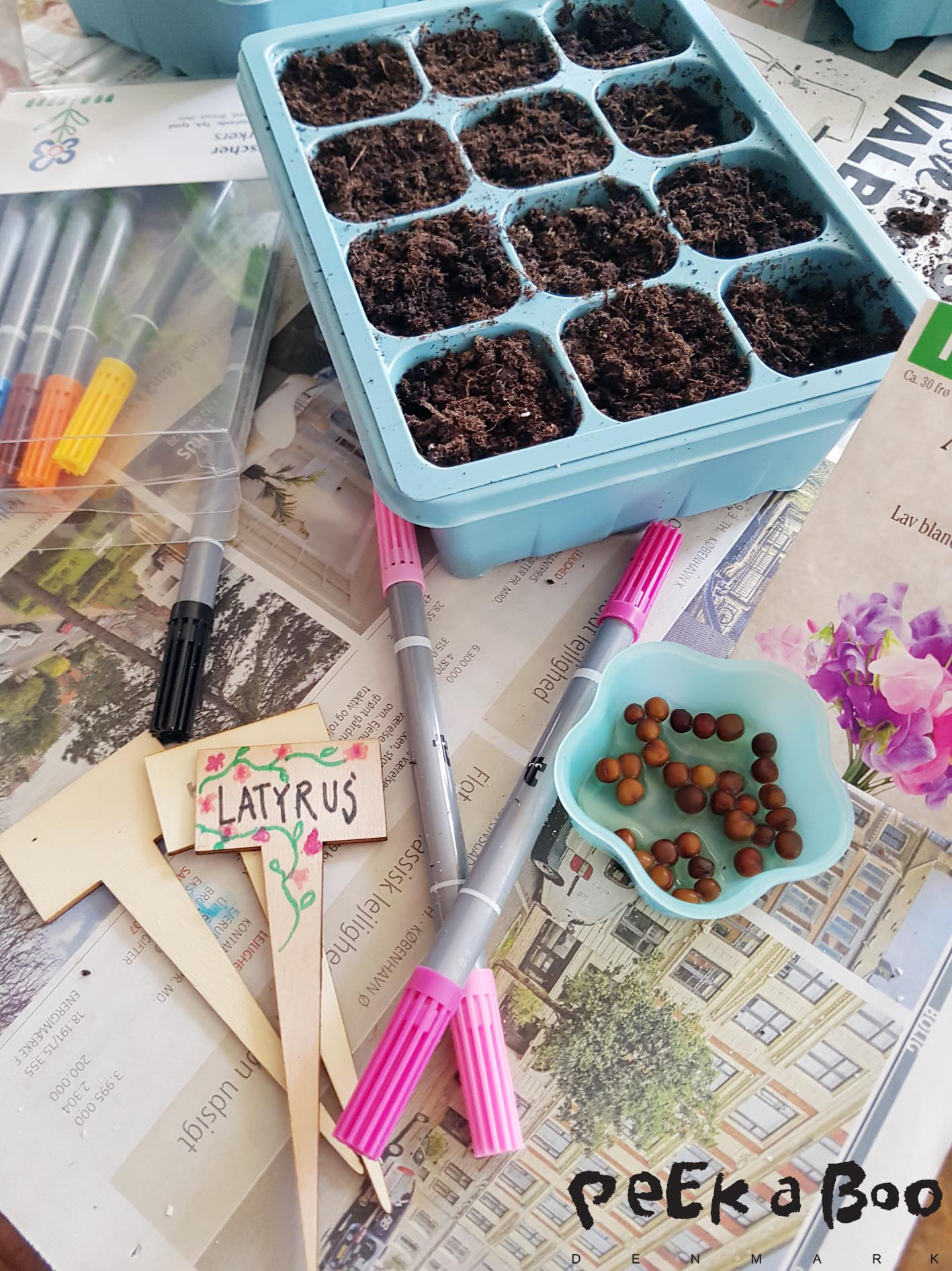 Remember to soak your seeds in water for peas and latyrus overnight, then they will easier sprout.