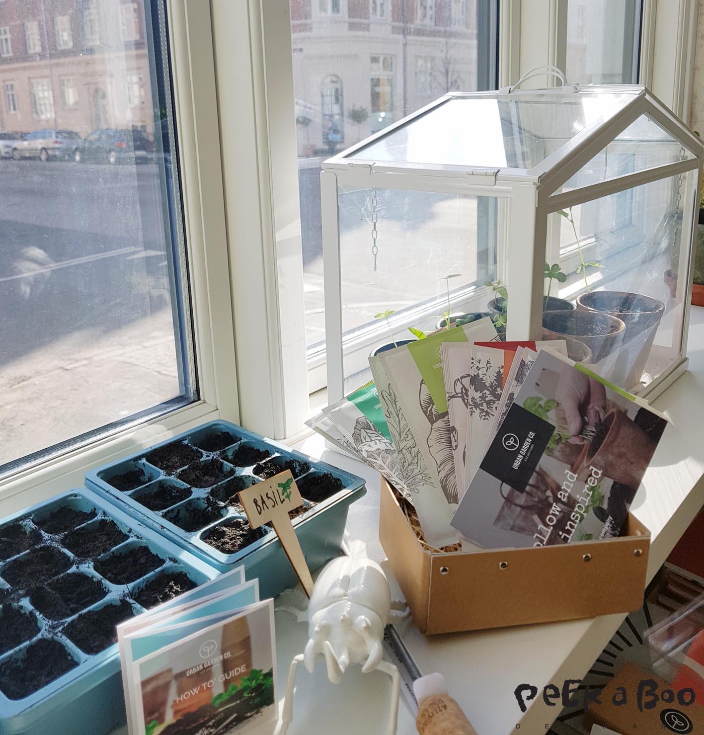 Her er kassen med 15 forskellige sorter til din urbane have fra Urban Garden Co.