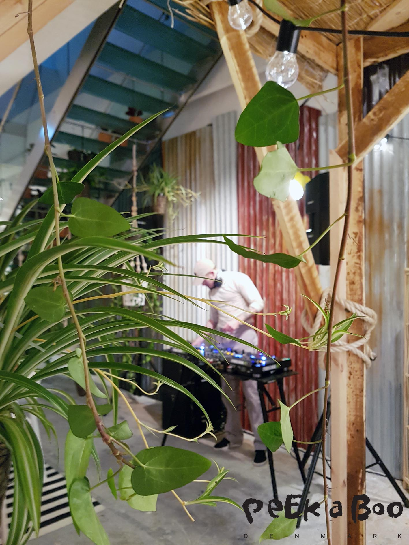 Behind the green plants you will notice the DJ.