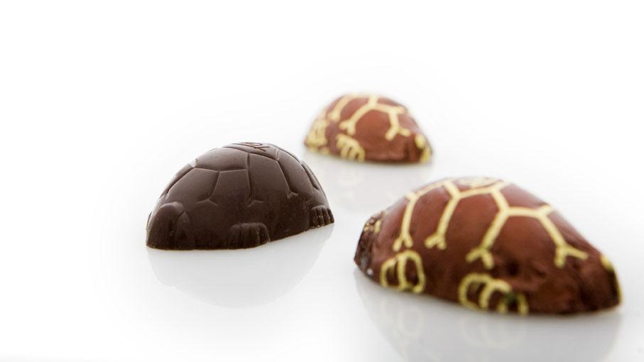 Disse små mini skildpadder bliver der altså spist næsten 20 millioner af hvert år i Danmark....det er alligevel en del...