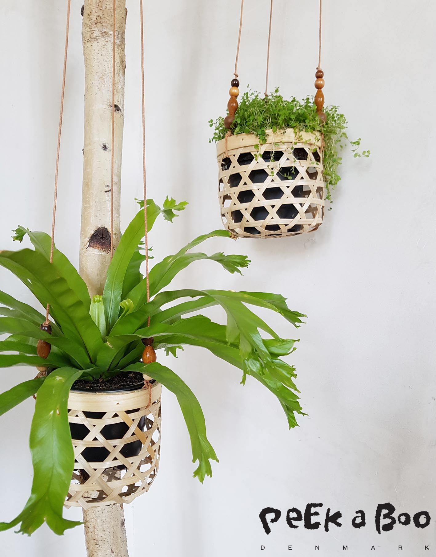 DIY hanging pots for your plants.