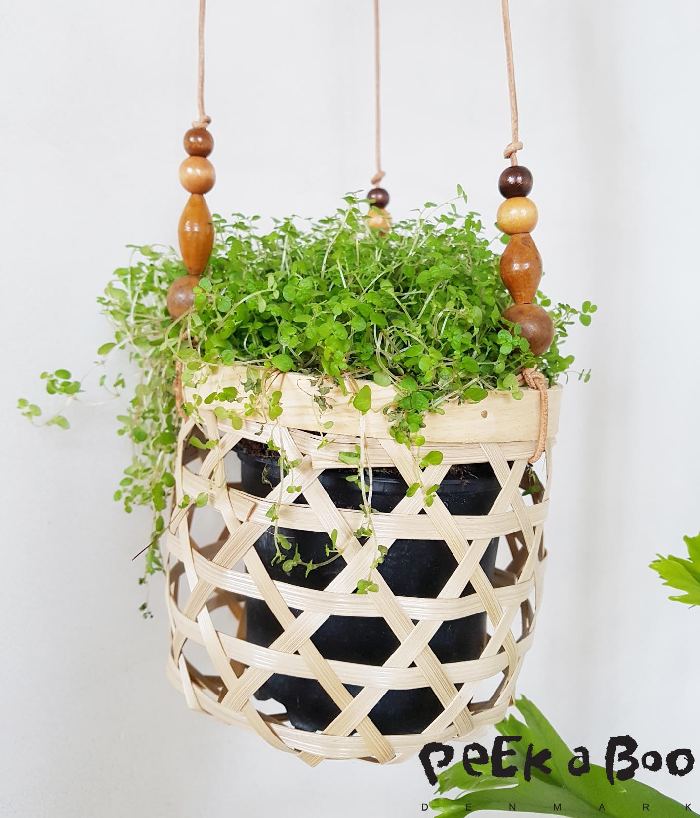 The basket are meent for bread but use them like this for your green plants in your home.