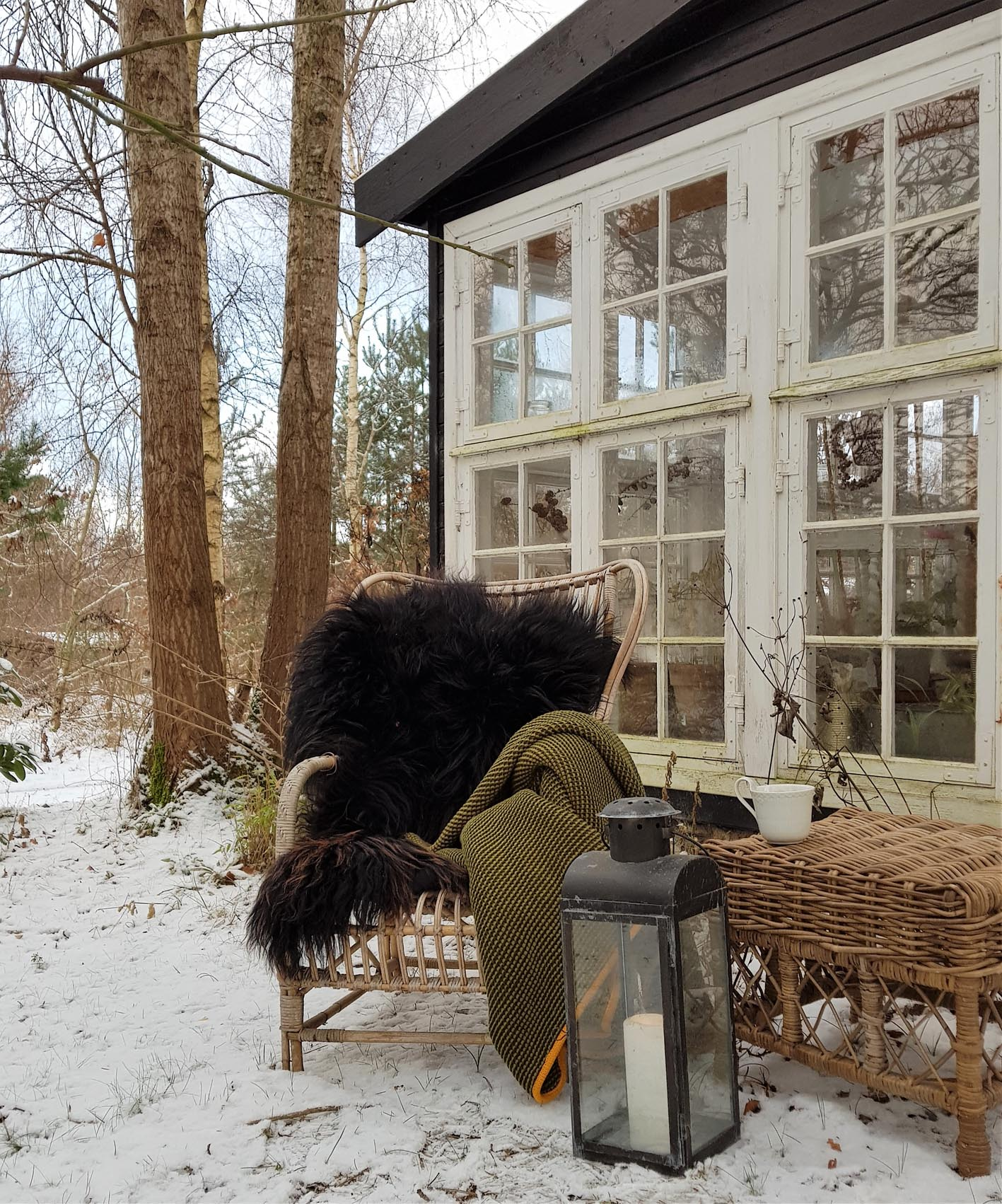 The old chair made of bamboo has moved outside from the greenhouse and  filled with sheepskin and a warming blancket it is ready for a sunny winterday.