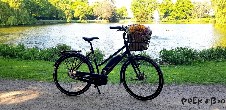 Batavus elcykel har fine detaljer og et strømlinet design