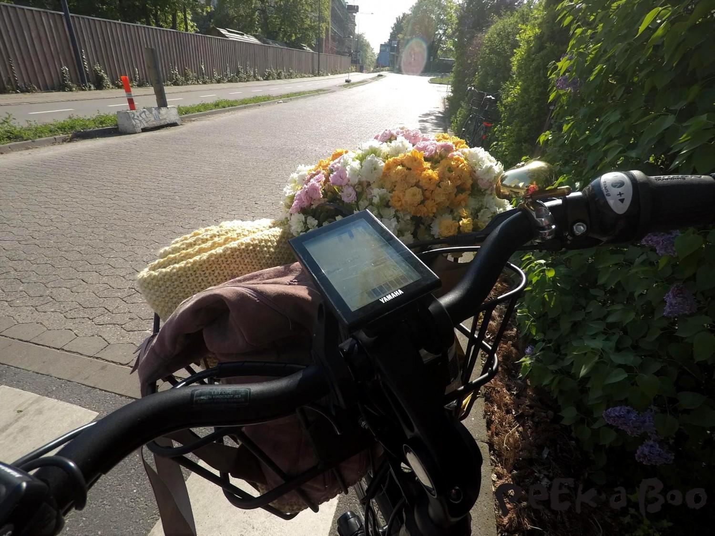 Elcyklen Harlem E-go fra Batavus er udstyret med en Yamaha computer, der kan måle fart, hvor meget energi du bruger på at cykle og meget andet.