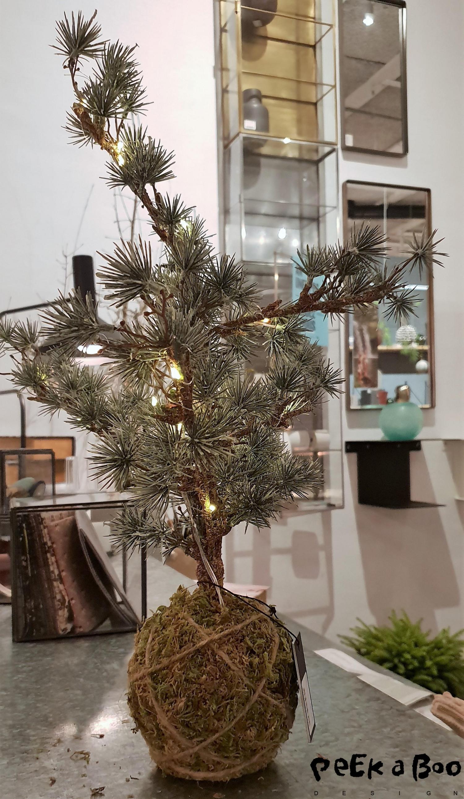 kokedama juletræ, så bliver det ikke sødere. Dette er fra House doctor.