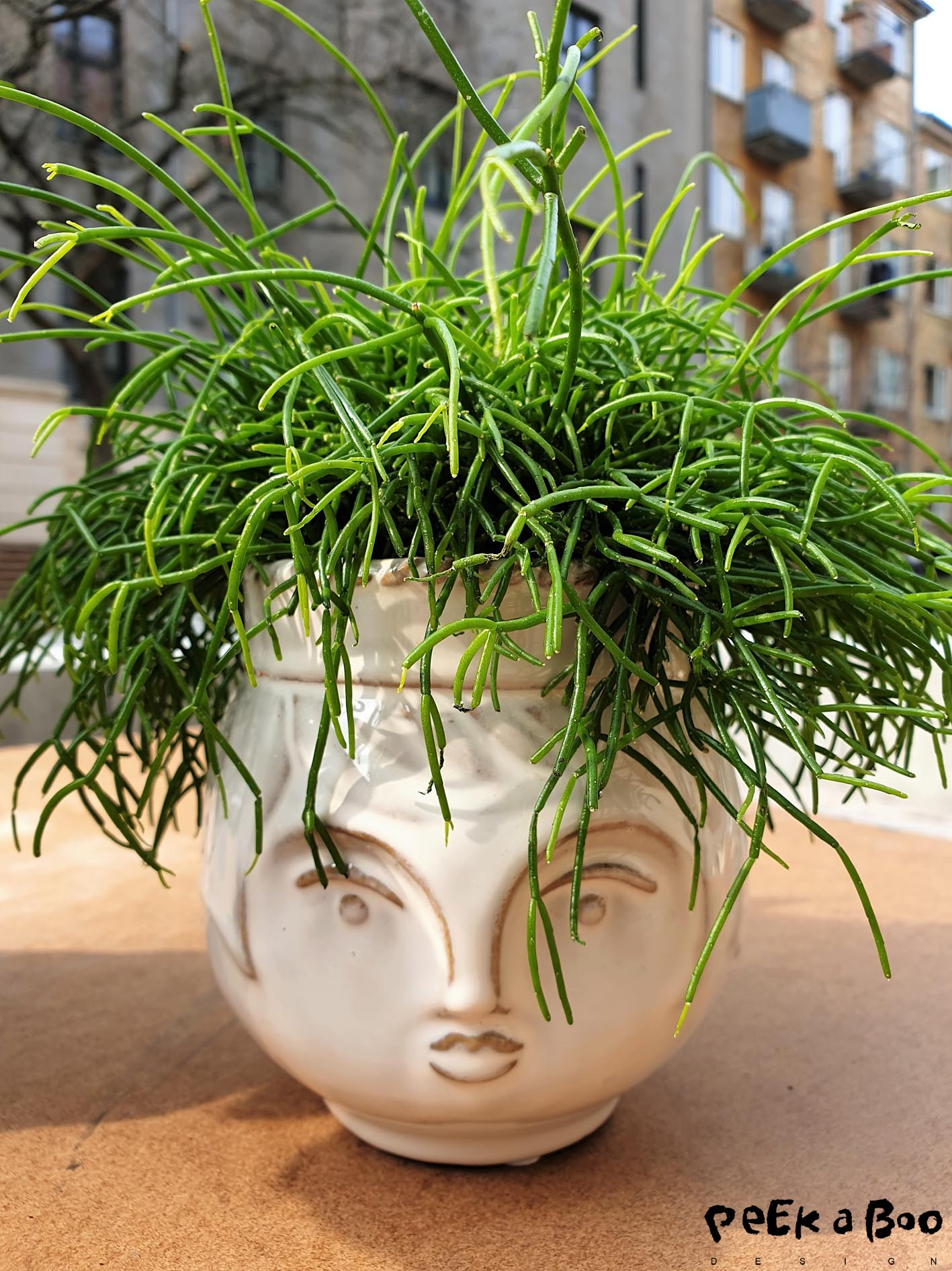 Cute flowerpot in the shape of an head...they are from Søstrene Grene. and the green plant is from Ikea.