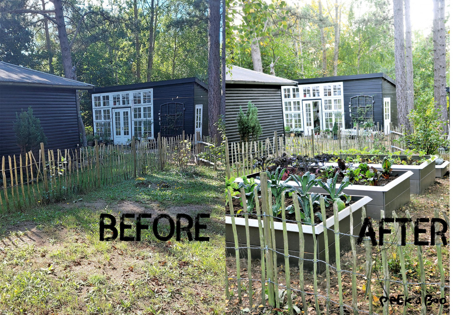 The garden before and after the transformation