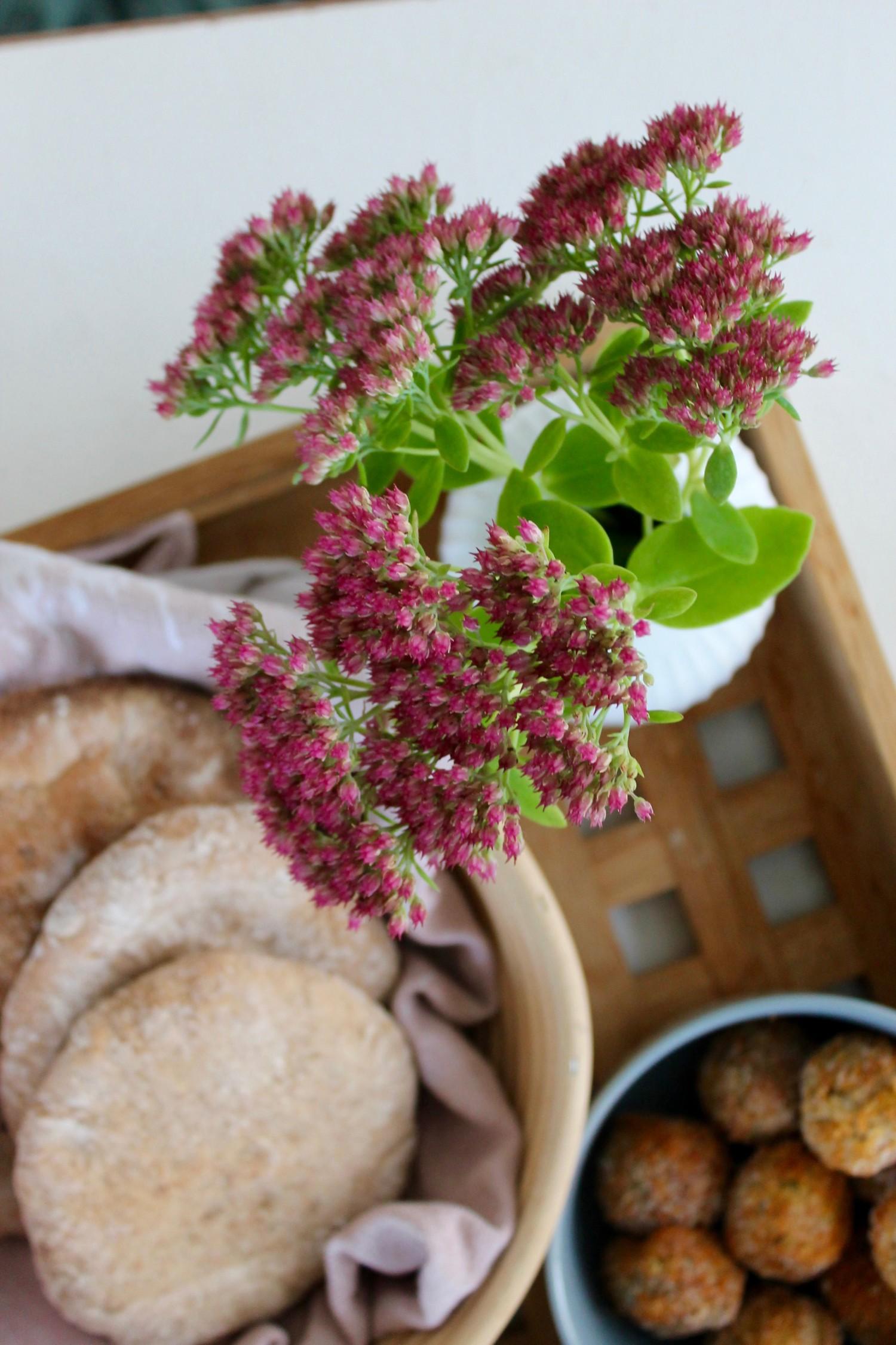 hjemmelavede pitabrød med falafler og hvidløgsdressing