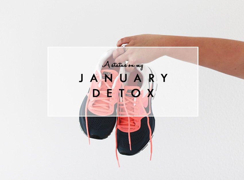 JANUAR DETOX <i>- en statusopdatering efter én måned..</i>