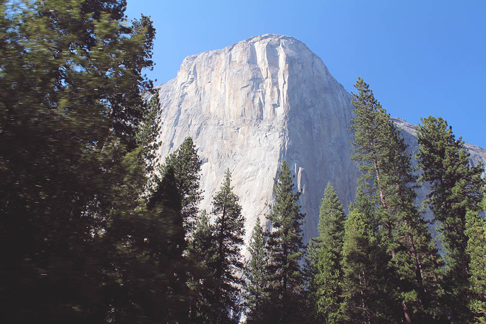 Roadtrip i Californien Yosemite national park guide 13