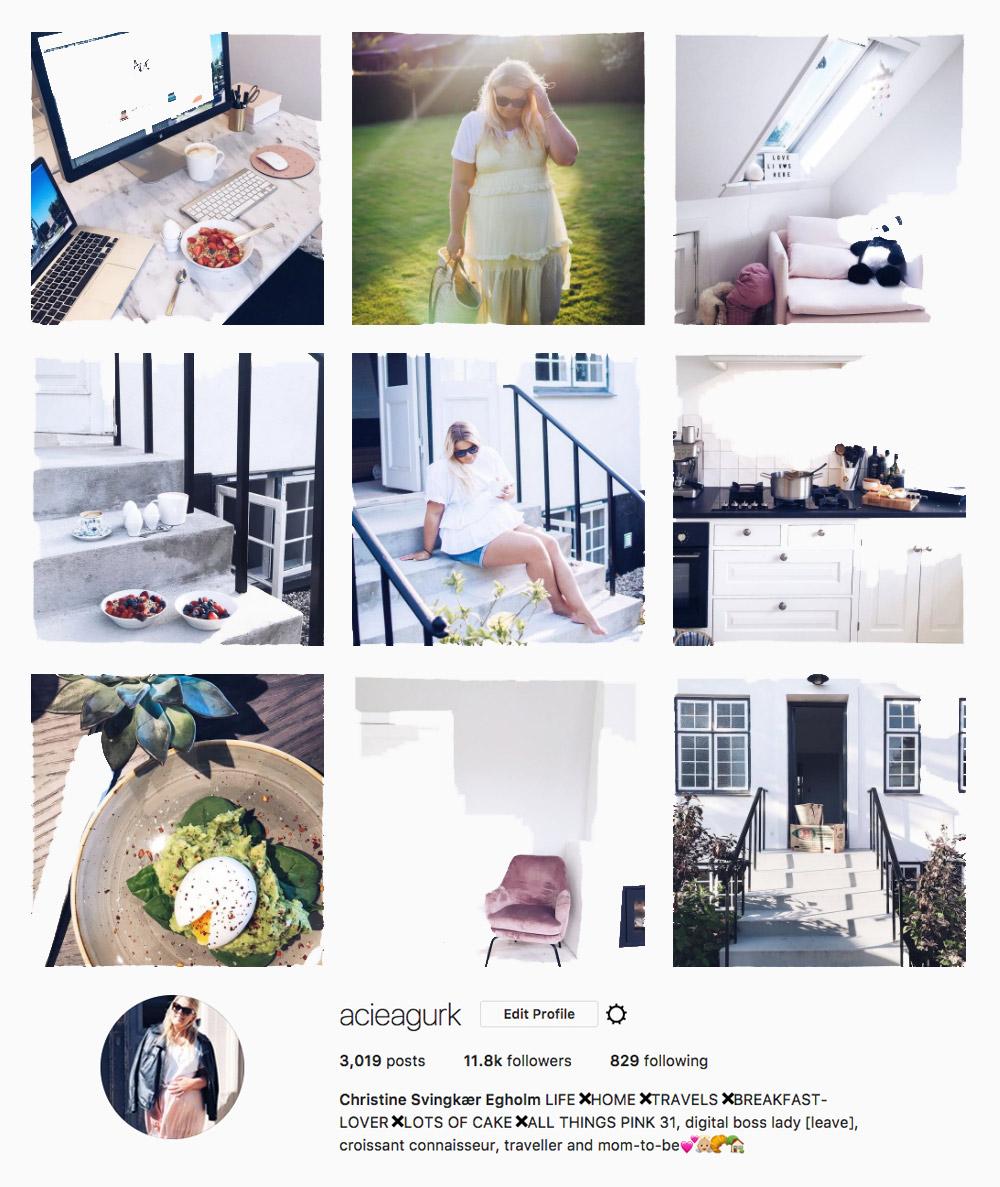 instagram-alt-for-damerne-artikel-acie