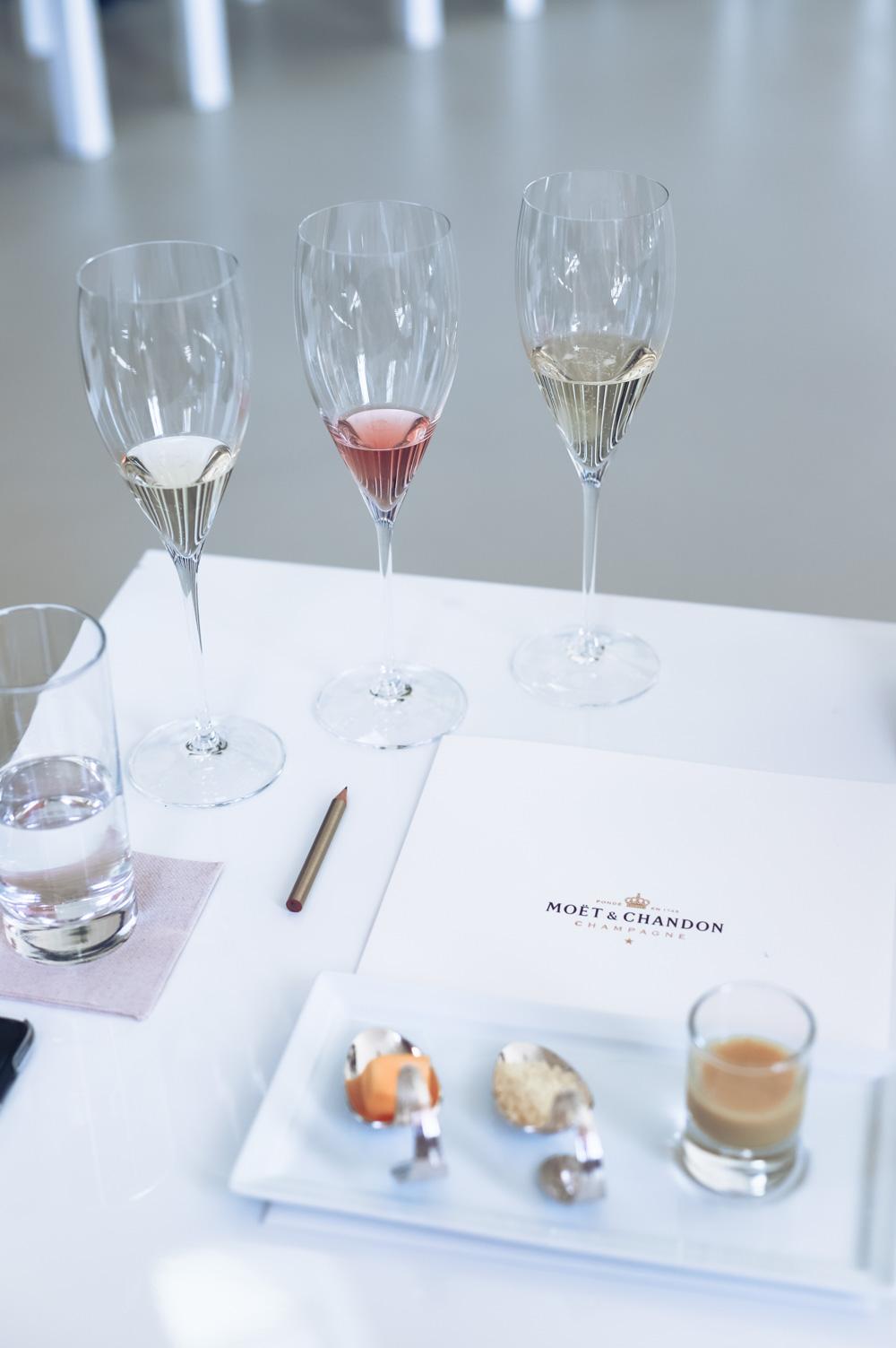 rejse-champagne-moet-19-of-40