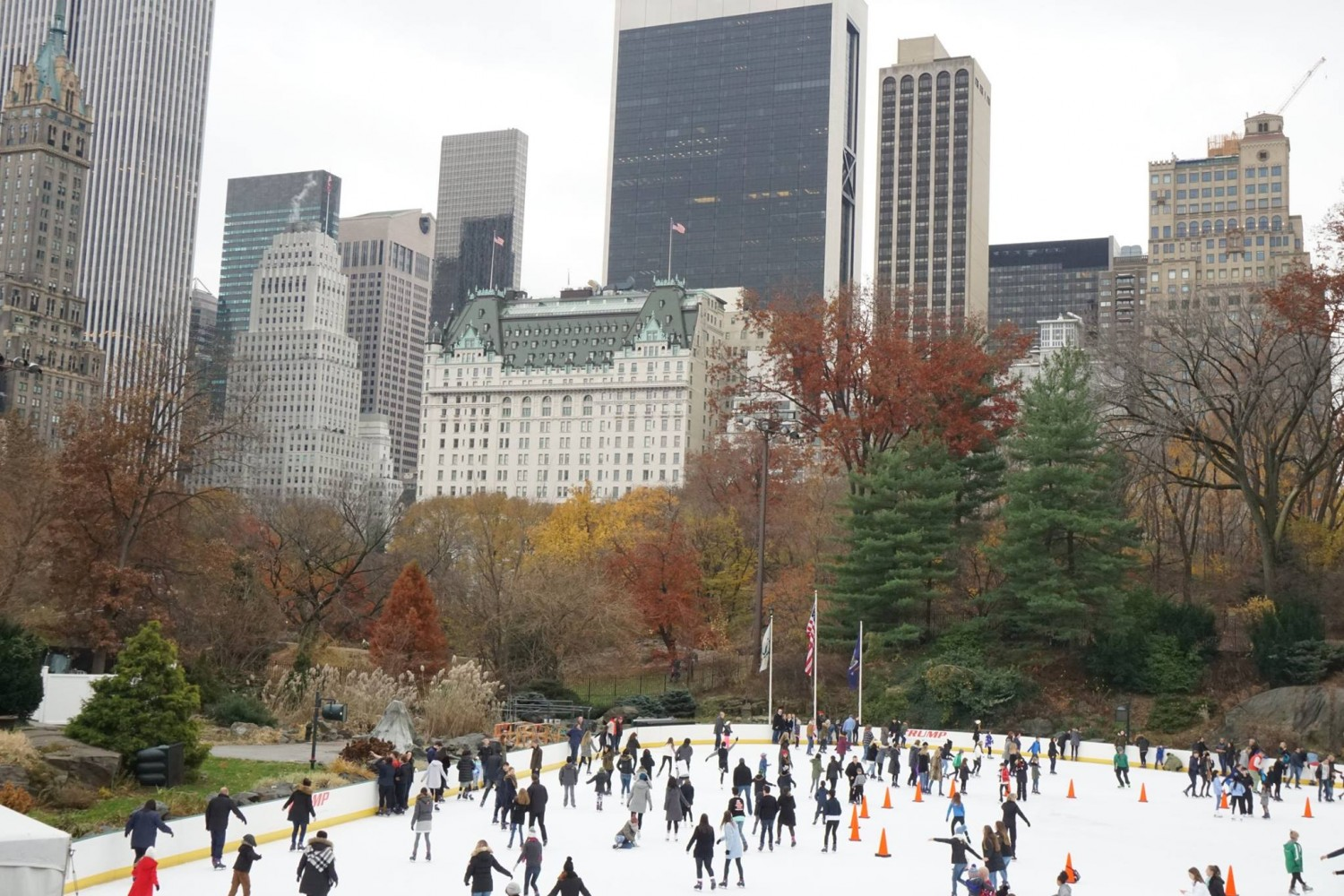 Homehappy - The Rink Central Park