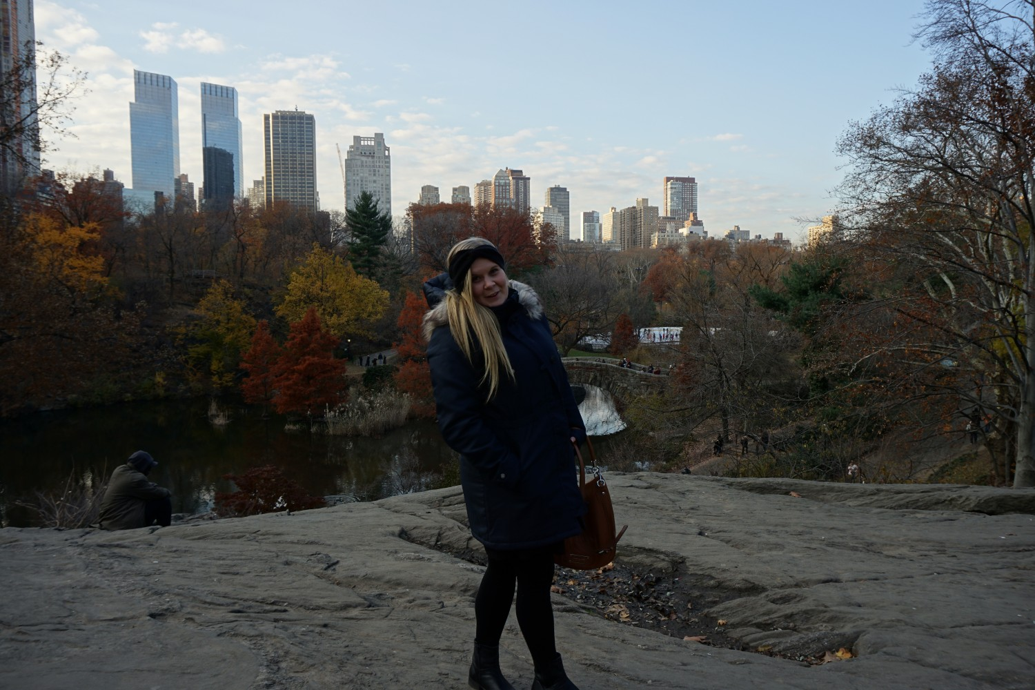 Central Park - Last day of autumn