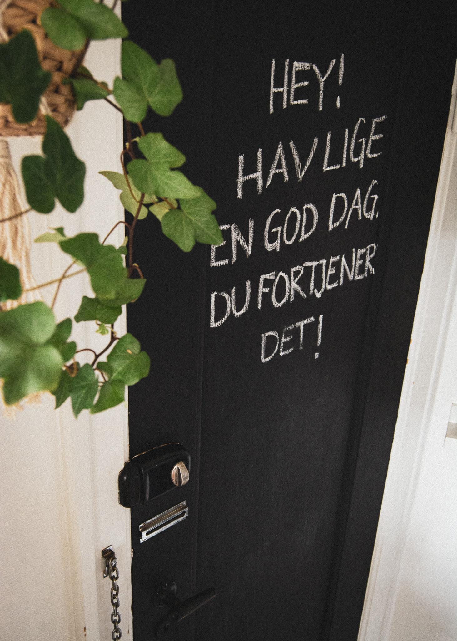 chalk, door, backdoor, plant, kridt, tavlemaling, dør, bagdør, plant