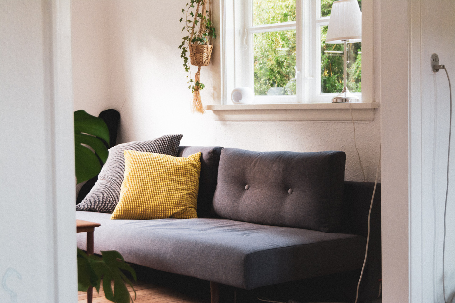 sofa, stue, hynder, plante, monstera, efui, couch, livingroom, pillows, plant, stories by holst