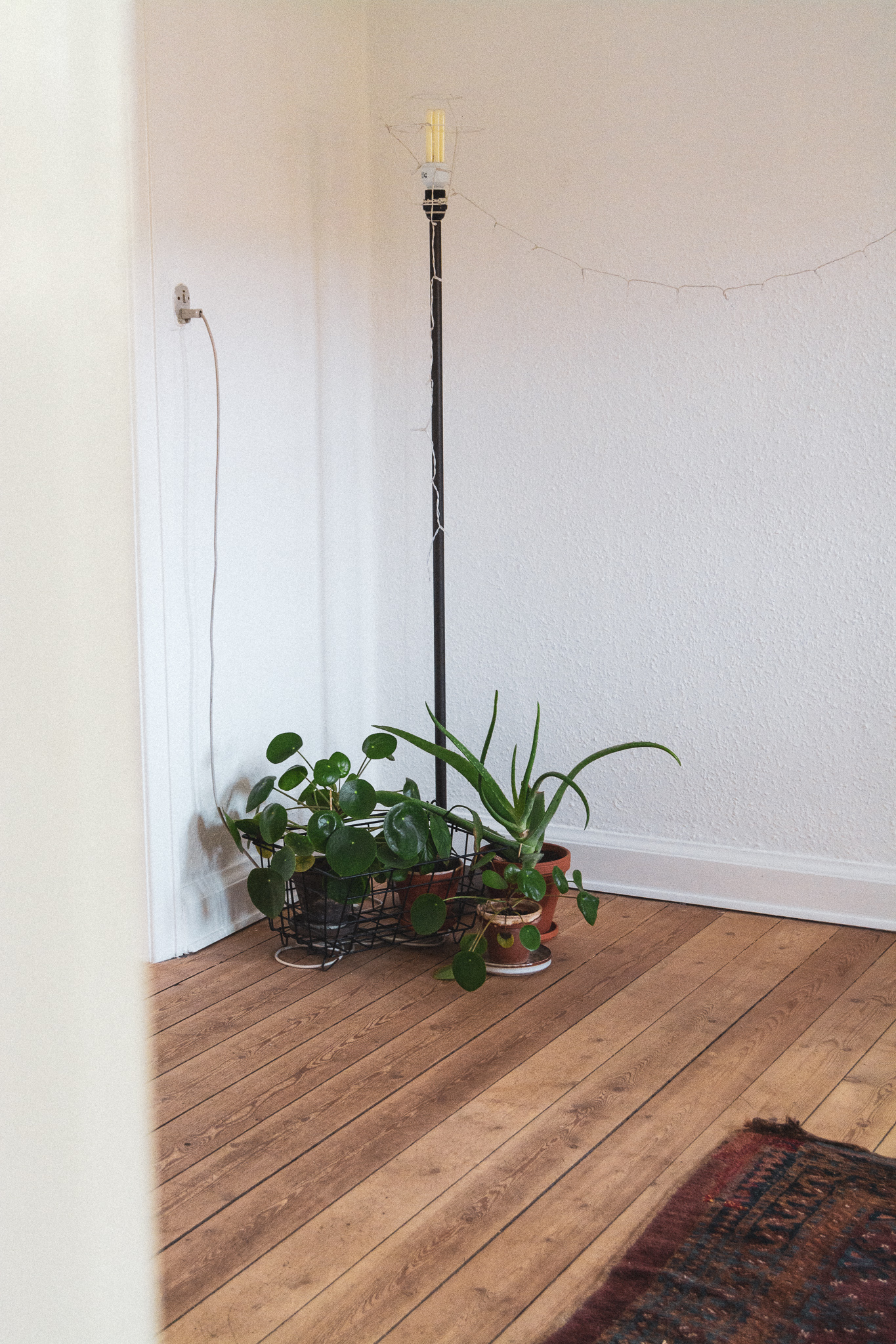 plantedekoration, plantvdecoration, basket, kurv, lampe, lamp, wooden floor, trægulv, livingroom, stue, stories by holst