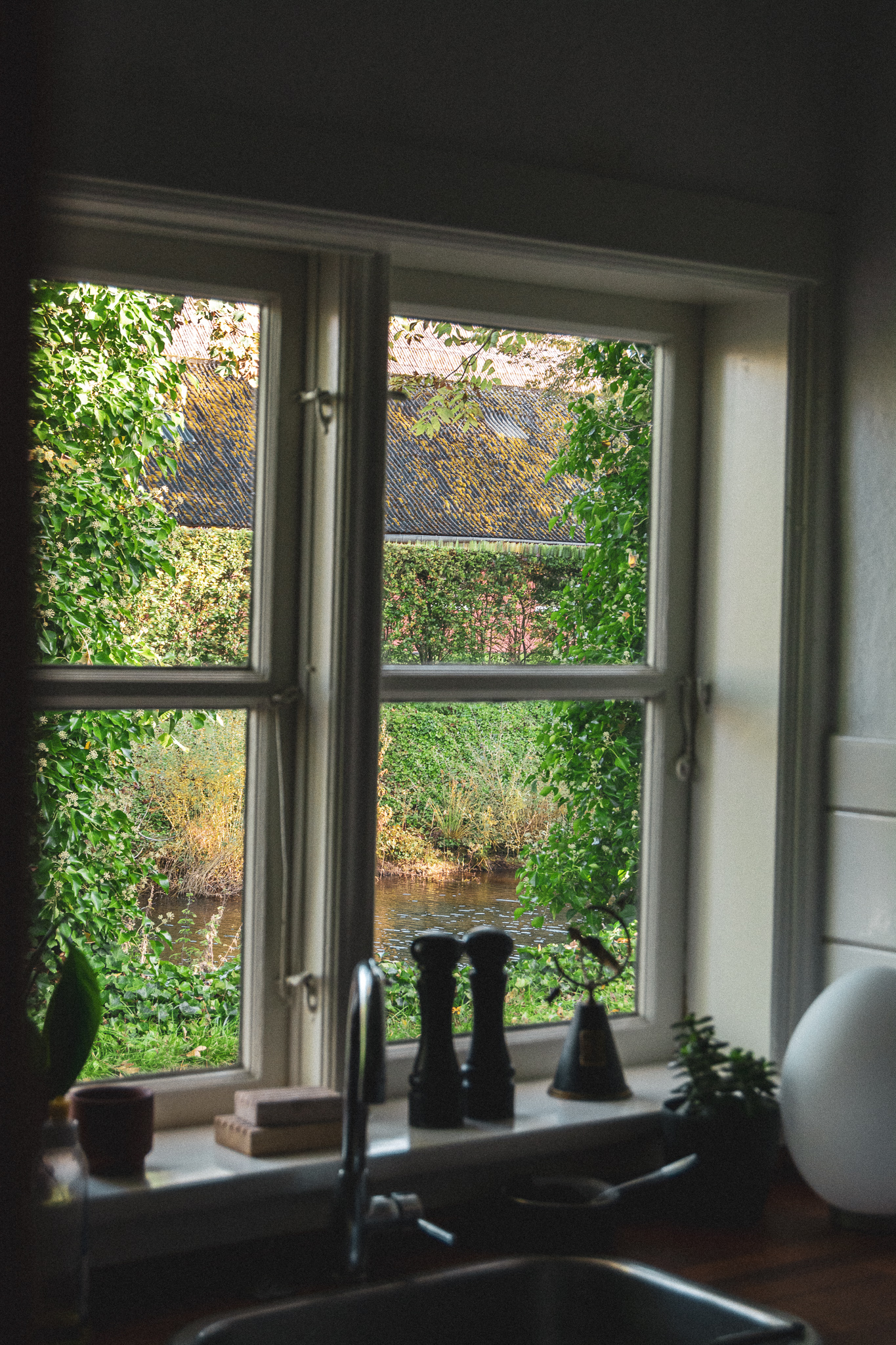 vindue, window, udsigt, view, kitchen window, køkkenvindue