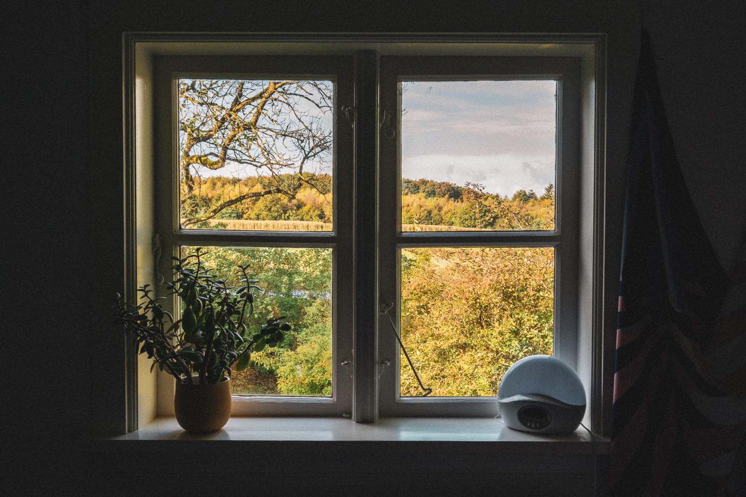 window, view, nature, plant, clock, vindue, udsigt, natur, plante, vækkeur, stories by holst
