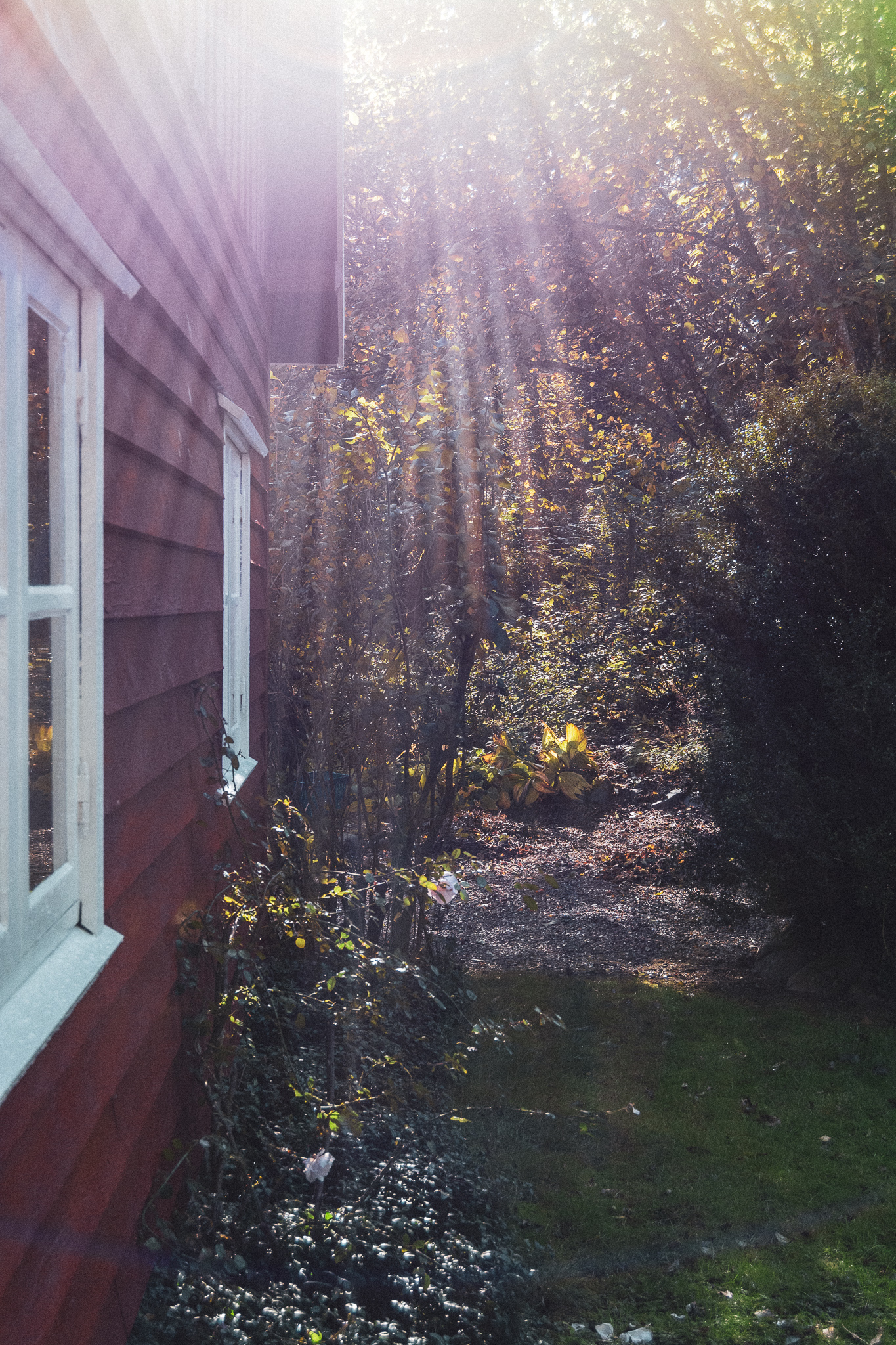 sunbeams, garden, wooden house, solstråler, have, træhus, stories by holst