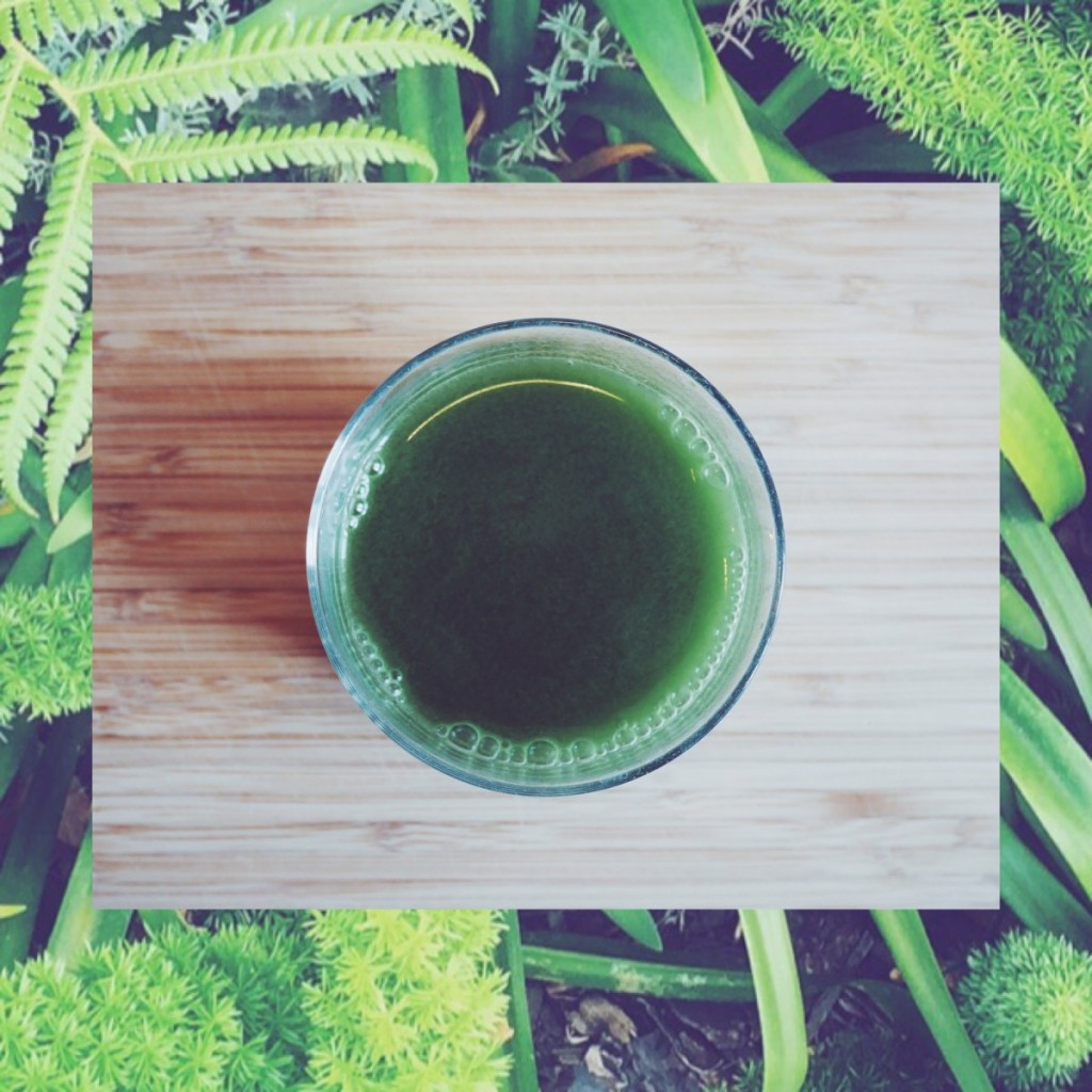 Wheatgrass, shots, hvedegræs, morning ritual, healthy shit, go green, organic, raw, health, wake up, bottoms up, simply food, simply fit, vegan, easy, holistic