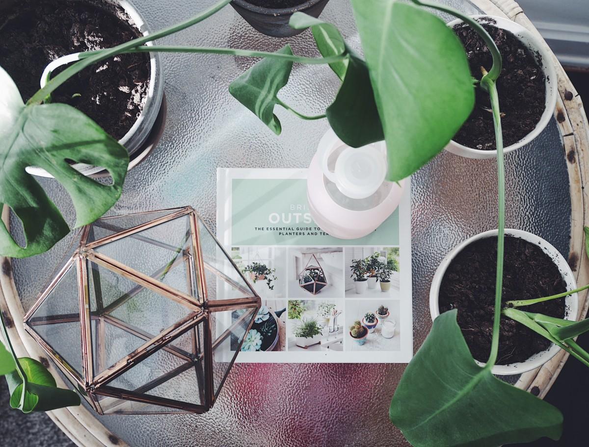 indoor gardening, terrarium, sprout home, brooklyn, hobby, nytårsforsæt, 2017, planter, ilt, luftfugtighed, sundhed, økologi, simplyliving, costume