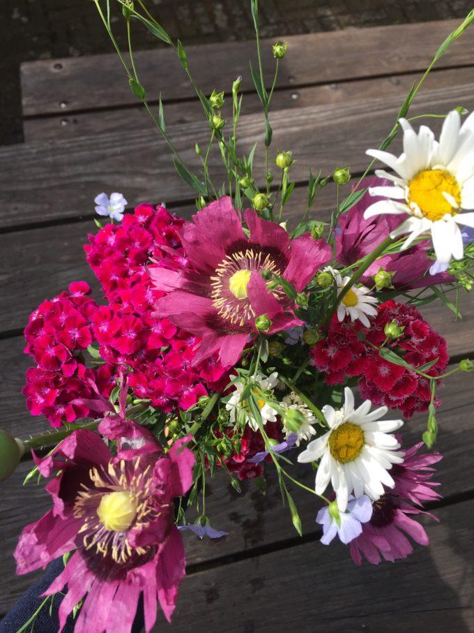 en-rustik-buket-blomster-fra-landhaven-med-hoerfroeblomtser