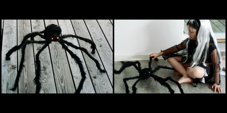 edderkop-coolshop