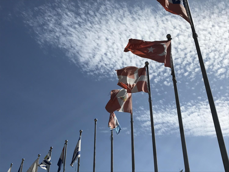 Det flotteste flag
