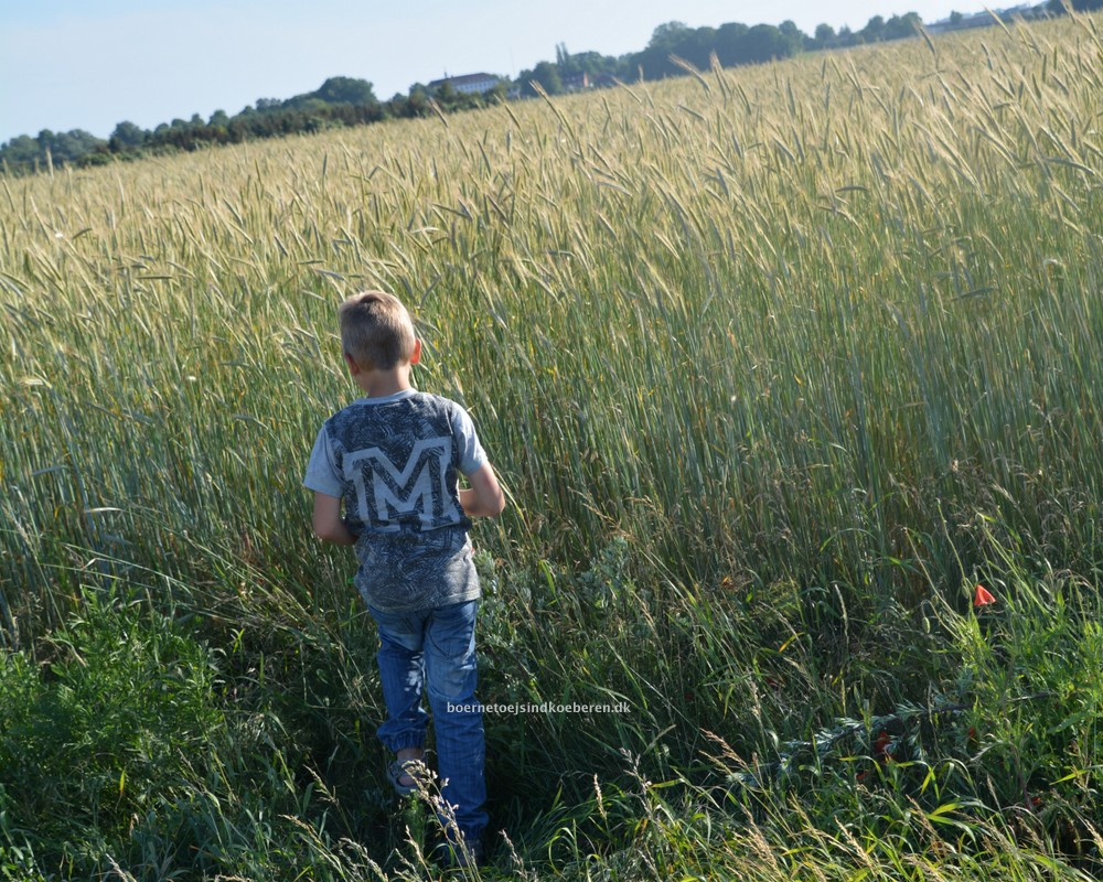 Sensitive børn og skolestart