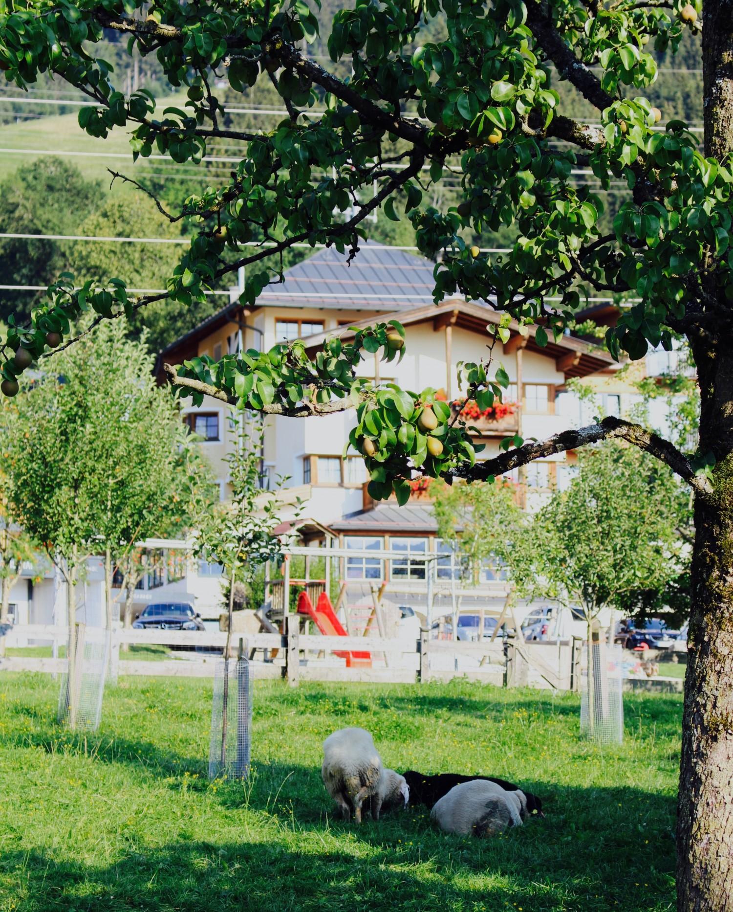 penzinghof-hotel-ostrig-annemette-voss10
