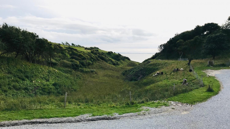 visit-nordjylland-annemette-voss-naesbydale-badehotel-2