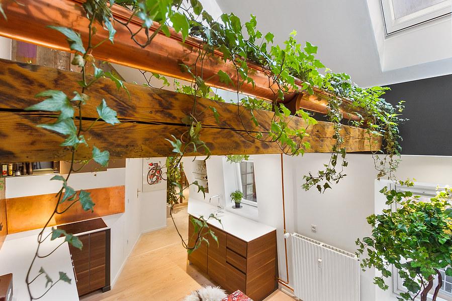 Planterne giver enormt meget liv og varme i køkkenet, det gør det nærmest lidt eksotisk at sidde og spise aftensmad.