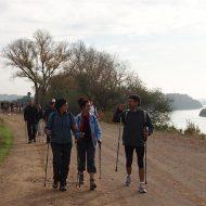 stavgang Nordic Walking gang Outdoor fitness