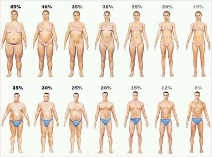 Fedtprocent Kropsform Grafik kilde ukendt søges
