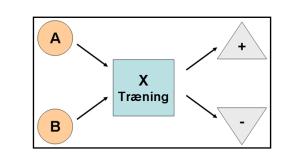 Træningsform og træning Træningsplanlægning basis model Marina Aagaard blog fitness