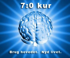 Slanke sensation 7:0 kuren Marina Aagaard blog fitness ArtM shiny-brain-1254880-m
