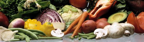 Mad_Kost_Maaltid_groentsager_Vegetables