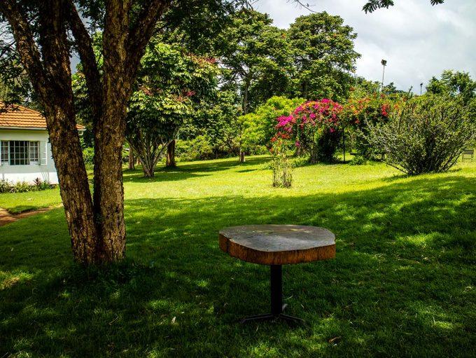 Marangu Hotel Tanzania Africa Kilimanjaro Trek Marina Aagaard blog travel photo rejse