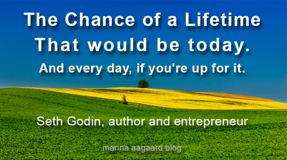 Chance_of_a_lifetime_that_would_be_today_Seth_Godin_image_Marina_Aagaard_blog