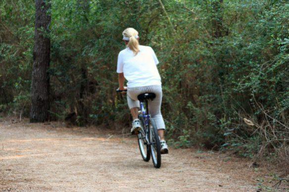 bike-trail-1437881