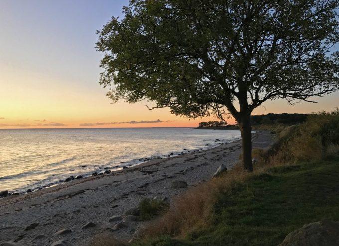 Fehmarn vandretur Natura Marina Aagaard blog fitness travel rejse