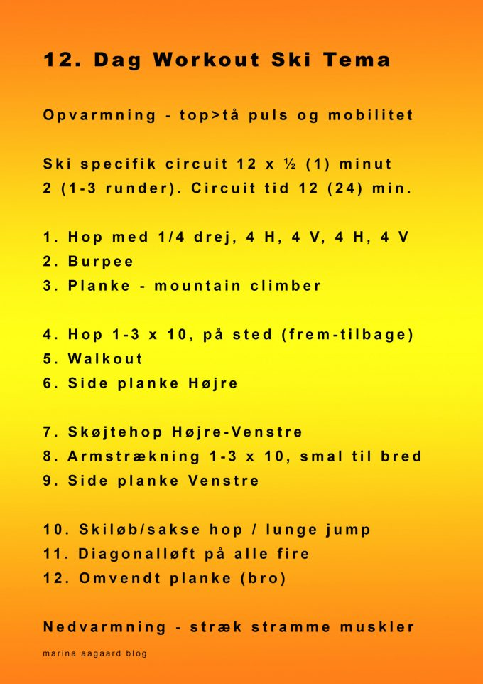 12_Workout_Circuit_Ski_Sport_Theme_Marina_Aagaard_blog_fitness