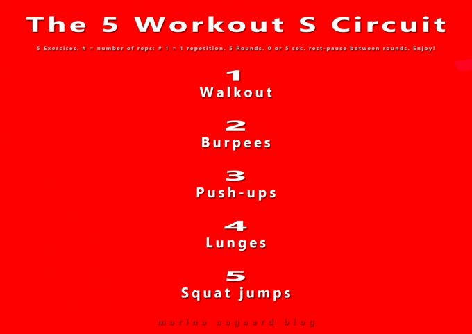 The_5_Workout_S_Circuit_Strong_Resistance_Training_Marina_Aagaard_blog_fitness