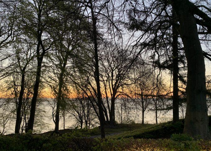 Min Aarhus morgen Marina Aagaard blog travel rejse foto