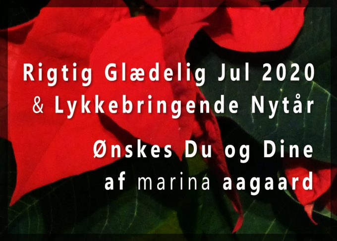 Julehilsen 2020 Marina Aagaard blog