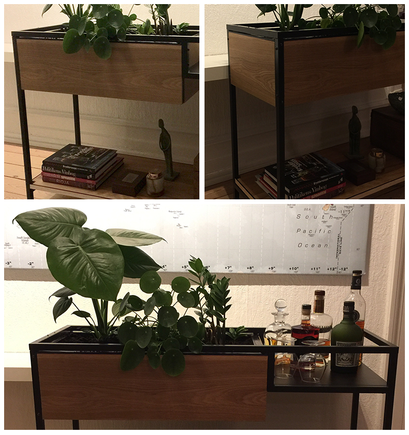 plantebarbord1